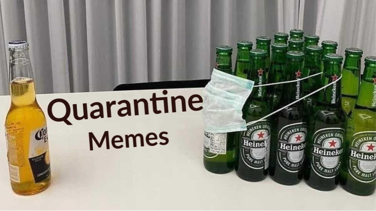 Quarantine Memes That Will Make You Laugh Throughout Quarantine