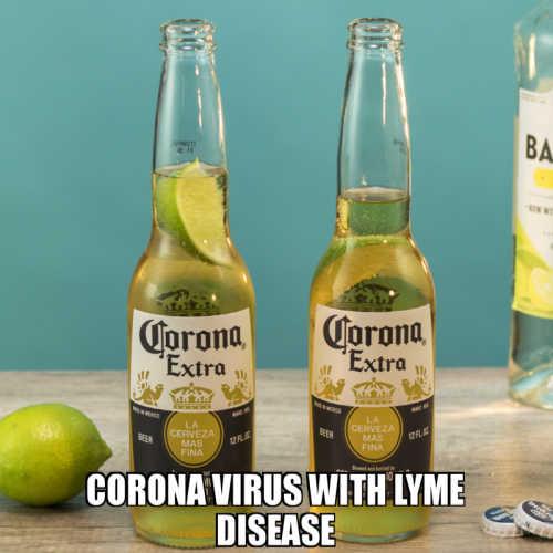 Funny Quarantine Memes For instagram