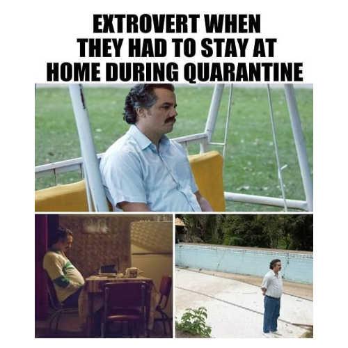 Quarantine jokes Images