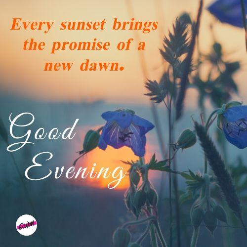 Good Evening HD Photos