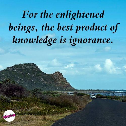 Ignorance Hurts Quotes