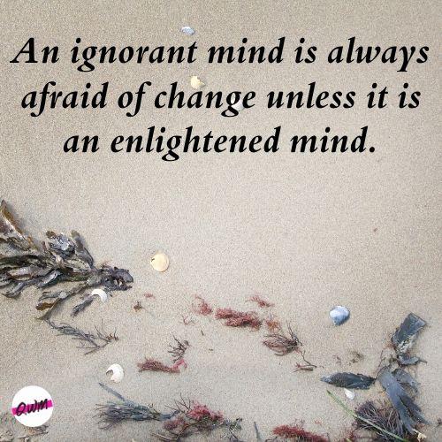 Love Ignorance Quotes